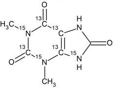 CCN4554P