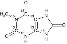 CCN4556P