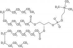 CD5019P025