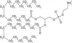 CD5064P025