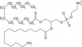 CD5053P